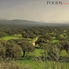 La Dehesa un écosystème unique au monde
