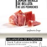 XVI Foire Jambon Ibérique à Los Pedroches (Espagne)