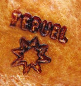 jambon de Teruel Serrano