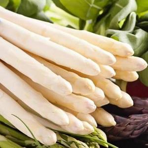 Les asperges blanches rraîchement coupées